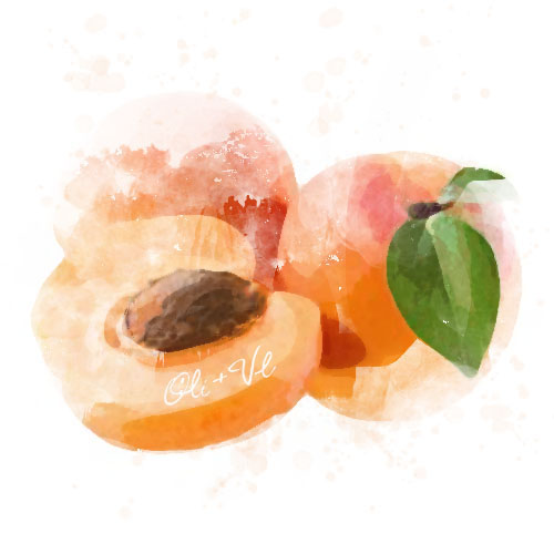 Apricot Balsamic