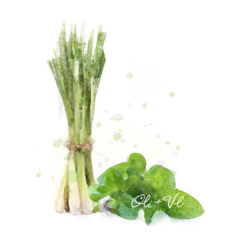 thai lemongrass mint